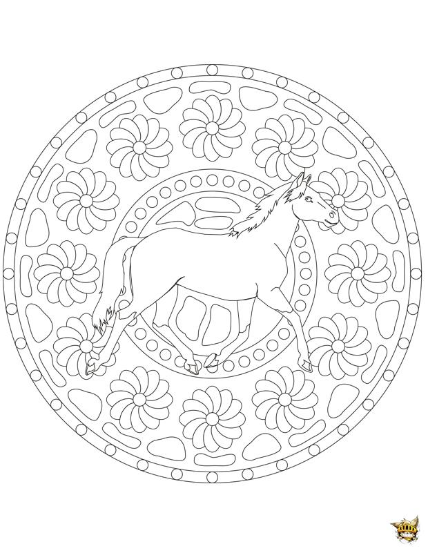 Coloriage cheval fleurs mandala sur - Mandala cheval ...