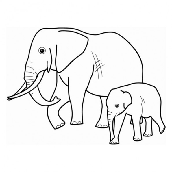Coloriage Famille Elephant.Famille Elephant