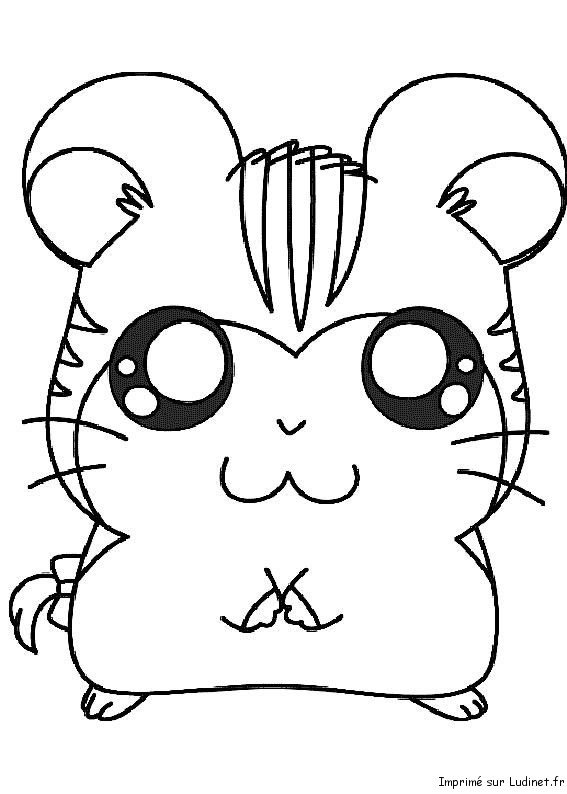 Squishy Pokemon Coloring Pages : Hamtaro gros yeux