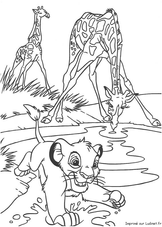 Simba Et Les Girafes Est Un Coloriage Du Roi Lion
