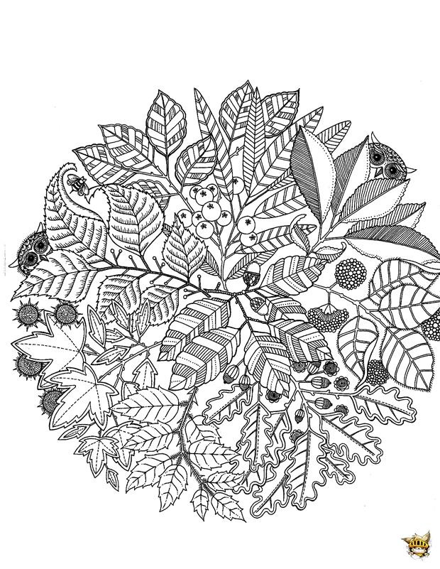 Coloriage Adulte Vegetation.Coloriage Vegetation Mandala Pour Adultes