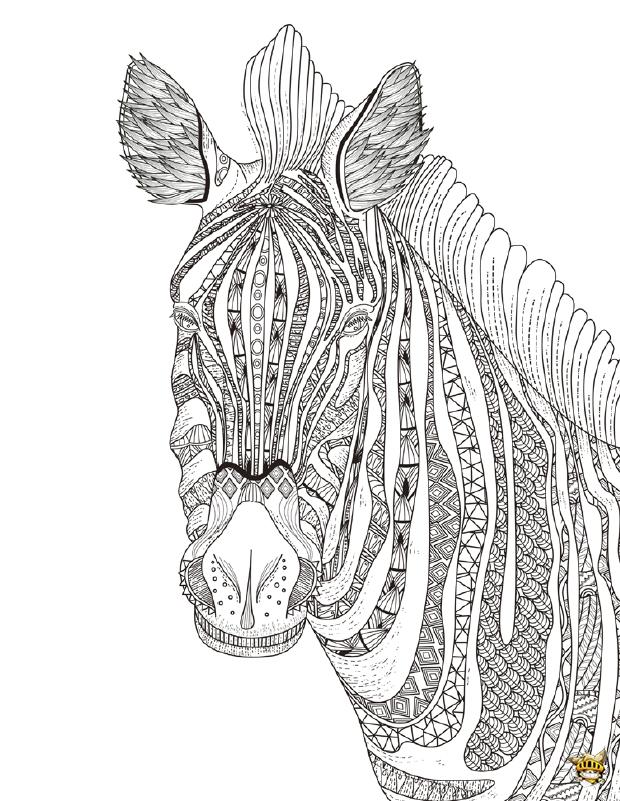 Coloriage Zebre.Coloriage Zebre Zen Pour Adultes