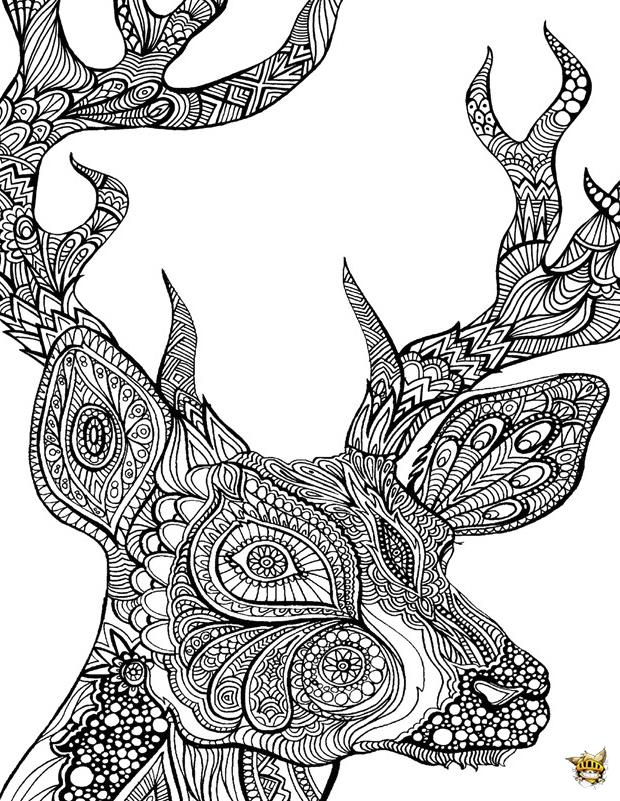Coloriage Zentangle Cerf Pour Adultes