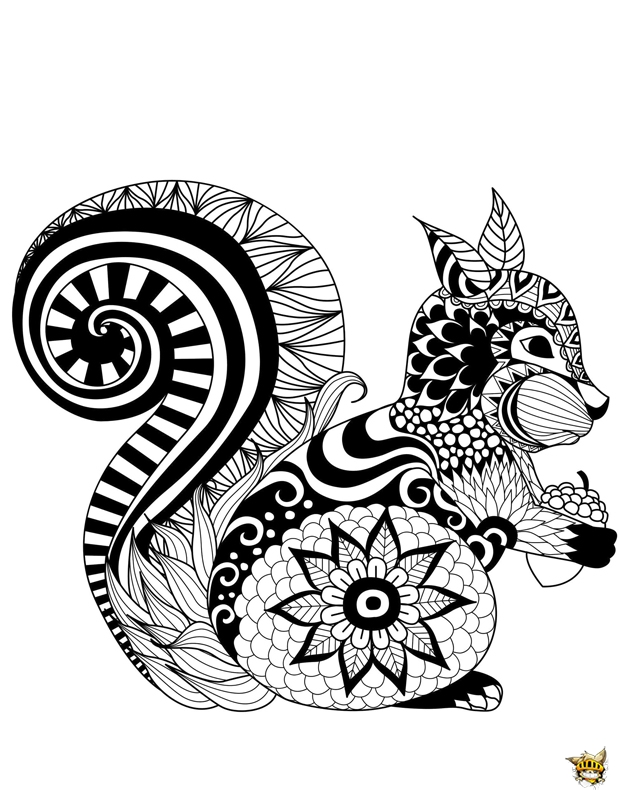 Zentangle ecureuil